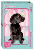 """Мозаика """"puzzle"""" 1000 """"Мирна"""" (Авторская коллекция) (Studio Pets by Myrna), арт.79540 фото"""