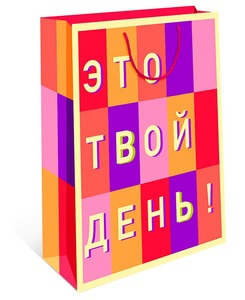 Сумка подарочная (1/12), арт.0293.134 фото