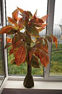 Дерево декоративное JW0762-1 (кор.24) (пластм. 90см.) фото