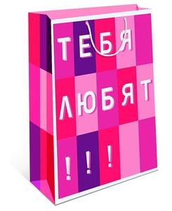 Сумка подарочная (1/12), арт.0293.136 фото