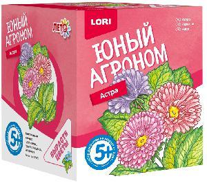 """Юный агроном """"Астра"""" арт.Р-001 фото"""